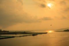 Sunrise on pond Stock Photo