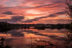 Sunrise on a pond stock images