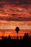 Sunrise Before the Rain Royalty Free Stock Photography