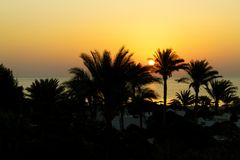 Sunrise, Red Sea, Egypt Royalty Free Stock Photos