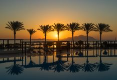 Sunrise on the red sea. In Sharm-el-Sheikh in Egypt Stock Photography