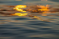 Calm Sea wave sunset view blue water ocean. Sunrise reflected in sea water, reflection in golden color royalty free stock images
