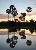 Sunrise reflection on a lake. Sunrise time and lake reflection Royalty Free Stock Photography