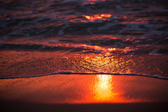 Sunrise reflection on waves Stock Images
