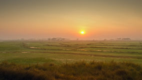 Sunrise on the rice field. Sunrise over the rice field near the town of Bago, Myanmar Royalty Free Stock Photography