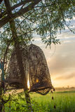 Sunrise on the rice field Stock Photos