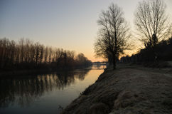 Sunrise on the river. Incontaminated nature reveals  details in the morning Stock Photography