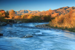 Sunrise river in the Wasatch Mountains. Royalty Free Stock Image