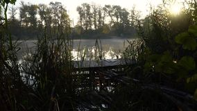 Sunrise on the riverbank. Landscape with wooden fisher pier, reeds and smoke on the water