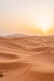 Sunrise in Sahara Royalty Free Stock Photo