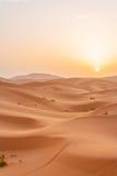 Sunrise in Sahara Royalty Free Stock Photo