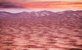 Sunrise in the Sahara  Desert Royalty Free Stock Photography
