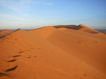 Sunrise in Sahara desert Royalty Free Stock Photos