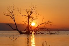 Sunrise at the Salton Sea. The Salton Sea fills the deepest part of the basin that used to hold Lake Cahuilla.  The lake dried up completely about 400 years ago Royalty Free Stock Photo