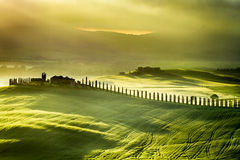 Sunrise at San Quirico d'Orcia Royalty Free Stock Image