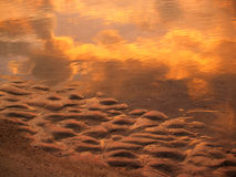 Sunrise Sand and Sea Reflections; Hunting Island. Clouds and reddish light of sun reflected at dawn in ripples of sand and water on the Atlantic; Hunting Island Royalty Free Stock Images