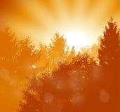 Sunrise scene Stock Photography