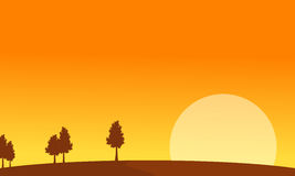 At sunrise scenery with tree backgrounds Royalty Free Stock Photos