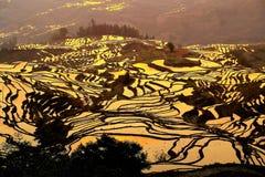 The Sunrise scenery of Yuenyang Hani Terrace in Yunnan , China. Yuanyang rice Terrace is located in the south of Ailao Mountain in Yuanyang County, Yunnan stock photo