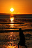 Sunrise on the sea. Sunrise in a National Park in Mozambique Stock Photography