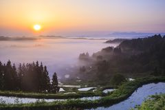 Sunrise from sea of clouds Stock Images