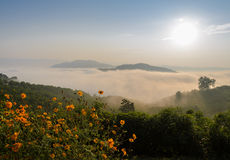 Sunrise with sea of fog above Mekong river Royalty Free Stock Photography