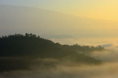 Sunrise at sea fog mountain national park. Stock Photography