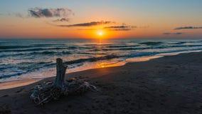 Sunrise on the sea, old wood snag on shore. Mood royalty free stock photos