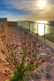 Sunrise sea view terrace Bulgaria. Sunrise and thistle grew up on a botched restored historic early Byzantine fortress sea view terrace at` Yailata ` royalty free stock photos