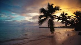 Sunrise sea view and tropical island beach in Punta Cana resort, Dominican Republic.  stock video