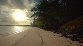 Sunrise sea view and tropical island beach in Punta Cana resort, Dominican Republic.  stock footage