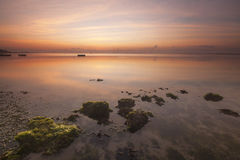 Sunrise at Seaweed Beach, Bali. This beach at Bali, Indonesia full with seaweeds, this was shot at dawn, before the Sun rise Royalty Free Stock Photos