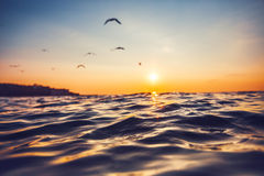 Sunrise and shining waves in ocean Stock Photos