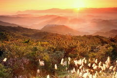 Sunrise shinning in the valley Stock Photos