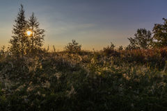Sunrise on shore of lake Ladoga, Karelian isthmus, Russia Royalty Free Stock Photography