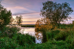 Sunrise at shore of a pond. Early autumn, sunrise is high dynamic range Royalty Free Stock Photos