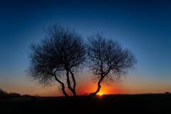 Sunrise Silhouette Stock Images
