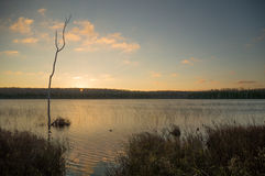 Sunrise and Silhouettes at Otter Lake Royalty Free Stock Image
