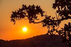 Sunrise in Simeiz, Yalta, Crimea, Ukraine, summer Stock Images