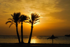 Sunrise at Sinai coast. Royalty Free Stock Photography