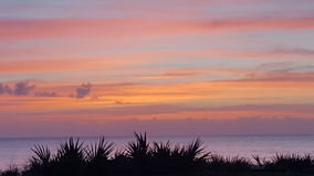 Sunrise. Sky Palm Beach stock image