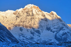 Sunrise in Snowy Mountain Landscape in Himalaya. Annapurna South peak, Annapurna Base Camp Track. Royalty Free Stock Photo