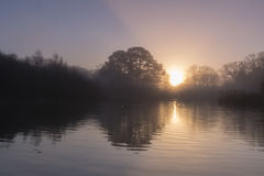 Sunrise Southampton Common stock image