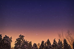Sunrise space in forest. The dawn in winter wood, already is sun light, but stars are still visible stock photography