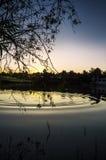 Sunrise Splash Stock Image