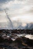 Sunrise Spray stock image