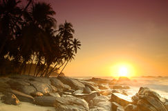Sunrise on Sri Lanka Royalty Free Stock Photography