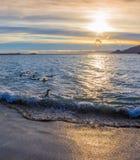 Sunrise on St Andrews Royalty Free Stock Photo