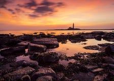 Sunrise over St Marys Lighthouse Stock Images