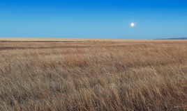 Sunrise in the steppes Stock Image